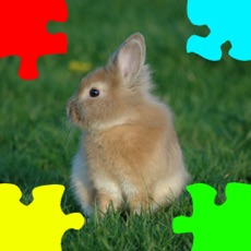 Activities of Baby Rabbits Jigsaw Puzzles