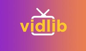 VidLib -- Tu librería de vídeos a la carta