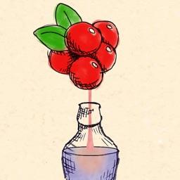 BerryMaker – DNA soda factory