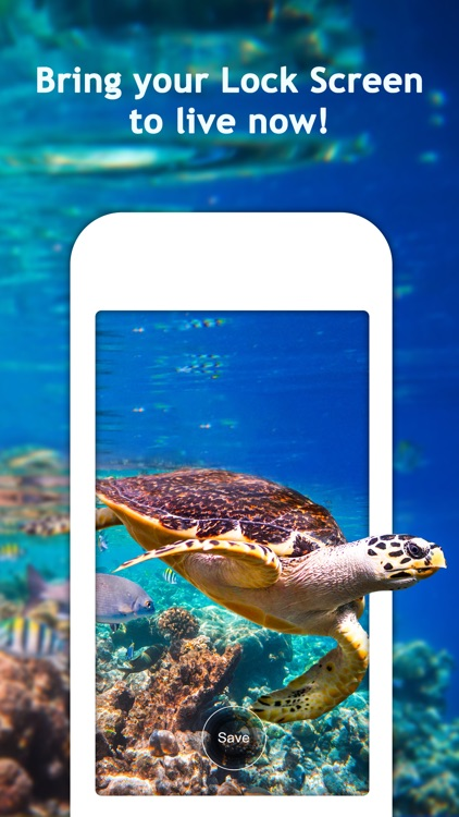 Aquarium Live HD Wallpapers for Lock Screen screenshot-4