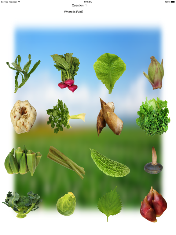 Vegetables Touch ~ simple trivia game ~ screenshot 6