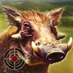 Warthog Hunting Practice