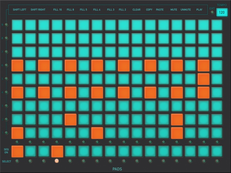 Turquoise DS screenshot-3