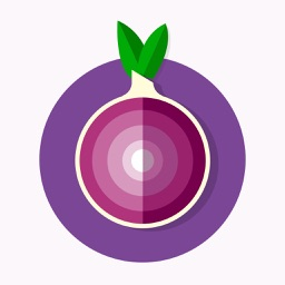 Secret Secure Web Browser With TOR Browser Powered