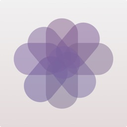 Vivid - Snap Filters