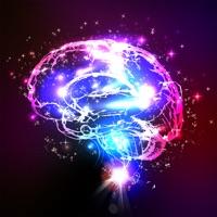 Codes for Brainy - Brain Training Hack
