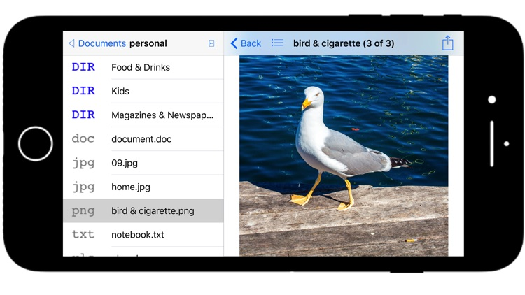 Private File Manager, Document and File Browser