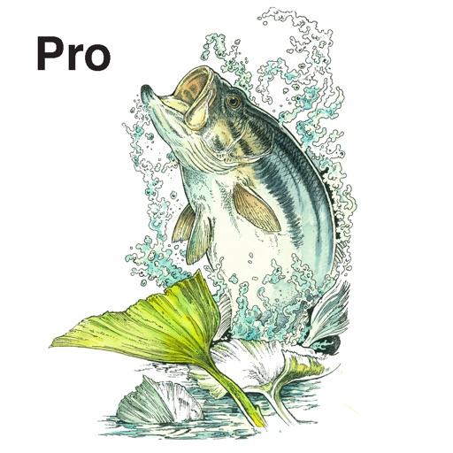 FishMate®Pro