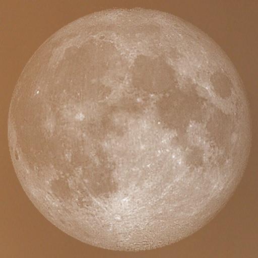 Lunar Planting Guide & Planner