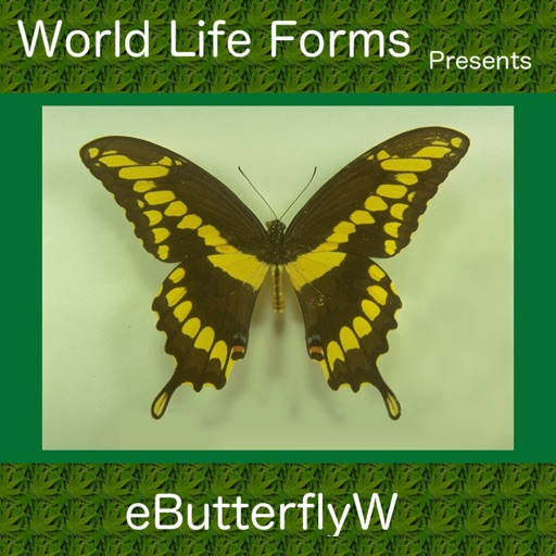 Butterflies of the World - A Butterfly App