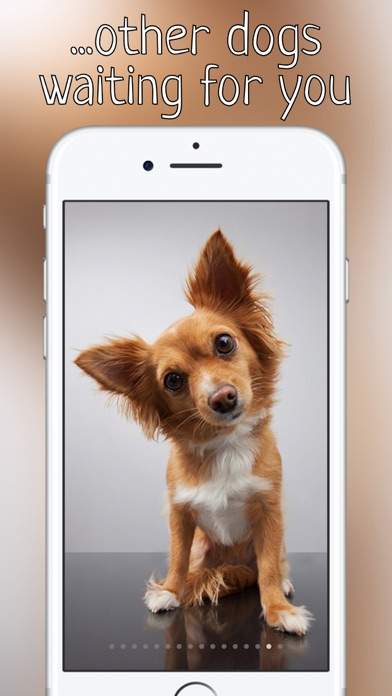 Woof Growl Dog Bark App Download Android Apk