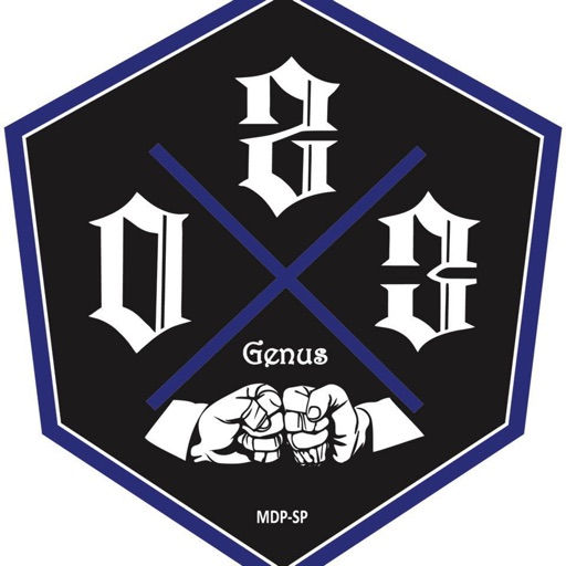 School Of Jiu Jitsu