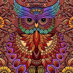 Coloring Owl: Paint Colorfy Cases