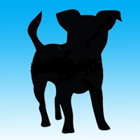 Codes for Doggy and Puppy Slide Game Hack