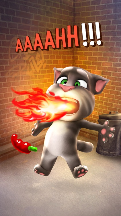 Talking Tom Cat screenshot-3