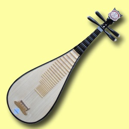 Chinese Instruments (English Version)