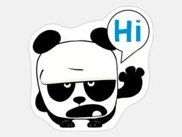 Misha & Masha Panda
