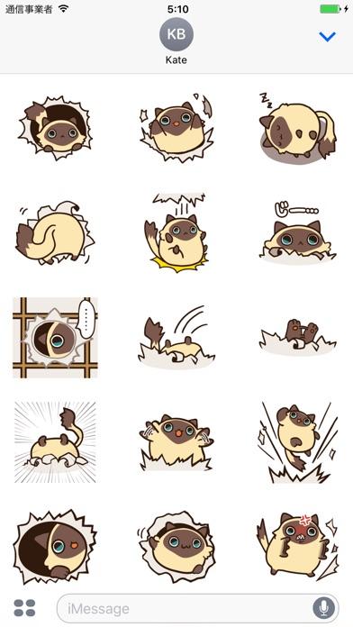 シャム猫ぼんのスクリーンショット1