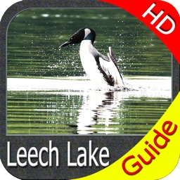Leech Lake Minnesota HD GPS fishing maps Navigator