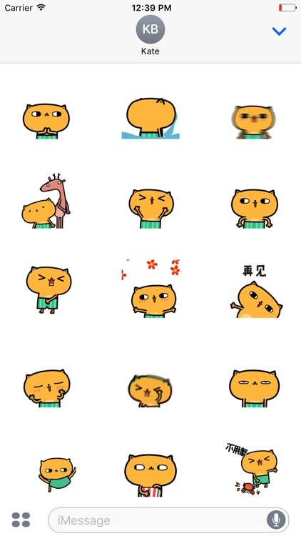 Animated Yellow Cat Stickers For iMessage