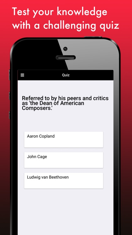 Famous Composers screenshot-4