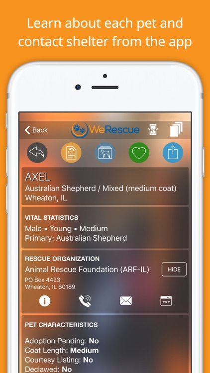 WeRescue – Find a Rescue Dog, Cat or Pet to Adopt