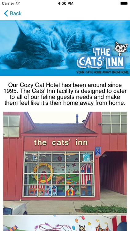 The Cats' Inn screenshot-3