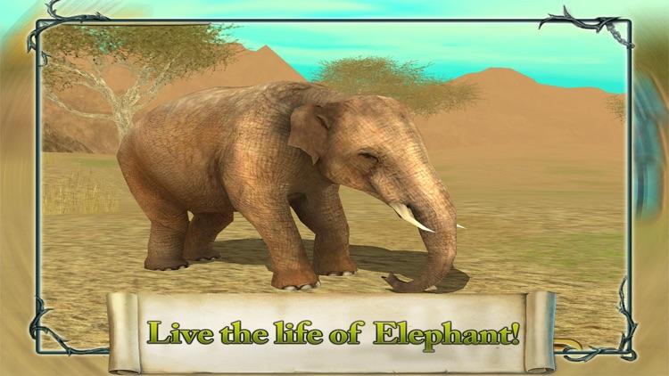 3D Elephant Simulation Premium