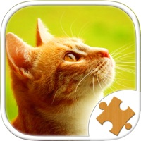 Codes for Cat Kitten Kitty Pet Jigsaw Puzzle Sliding Game Hack