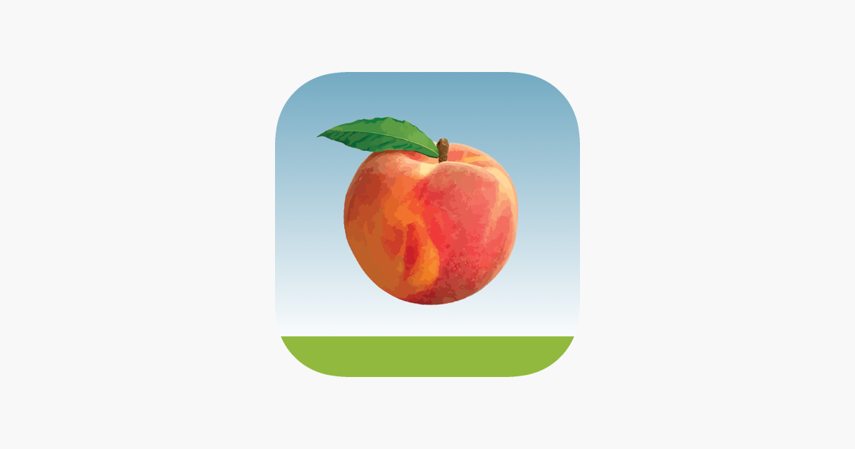 Peach State Fcu On The App Store