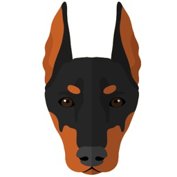 My Doberman Pinscher