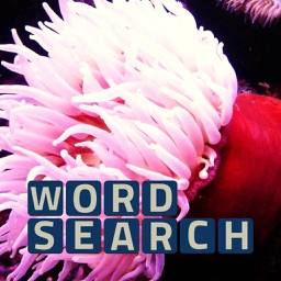 Wordsearch Revealer Sea Life