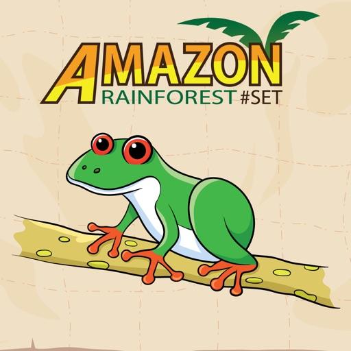 Word Play Amazon Animal