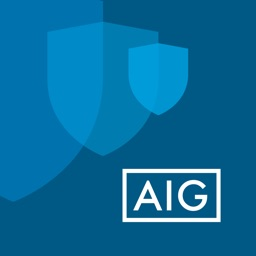 AIG for Business