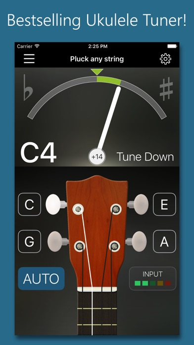 Precision Ukulele Tuner - with Chords & Metronome Screenshot