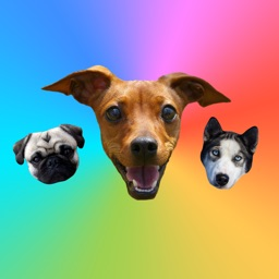 Dog Stickers for iMessage : Dogs & Dog Heads