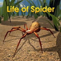 Codes for Life Of Spider Hack