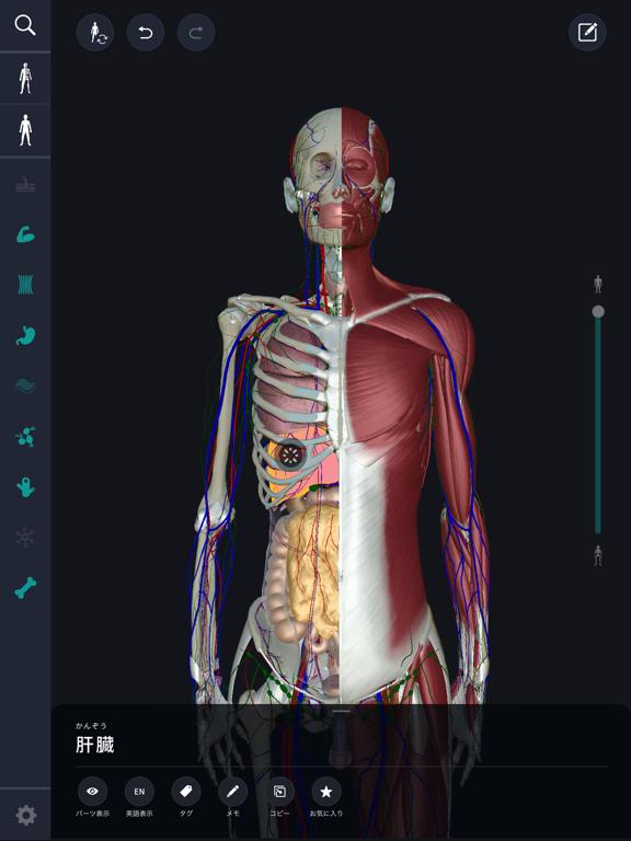3D人体解剖学 teamLabBody2020のおすすめ画像1