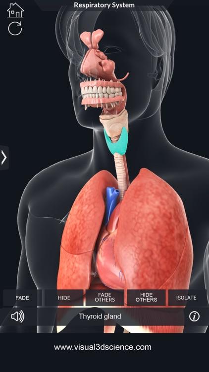 My Respiratory System Anatomy screenshot-3