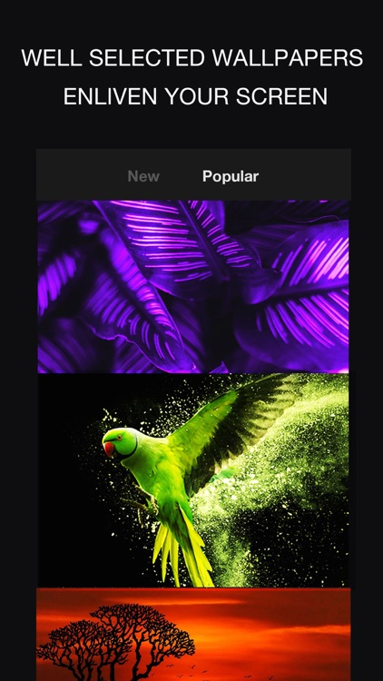 24KLiveWallpapers screenshot-7