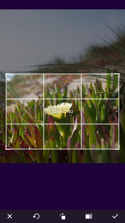 Photo Video Asset Editor screenshot-3