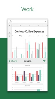 Microsoft Excel iphone images