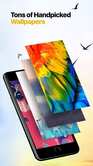 Wallpapers HD & 4k Background Screenshot