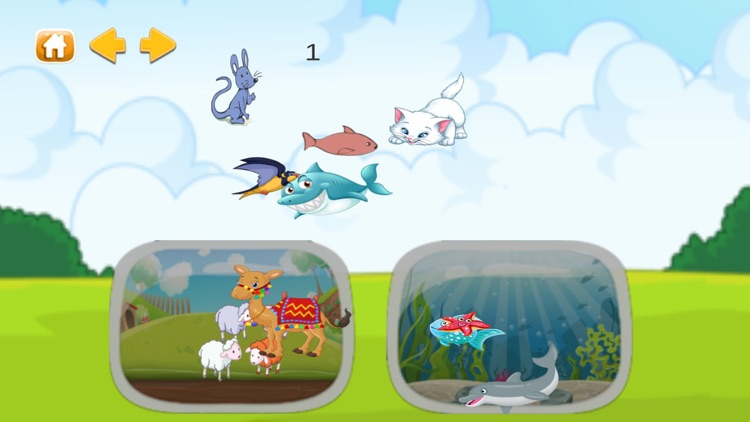 Animal World - enjoy learning screenshot-5