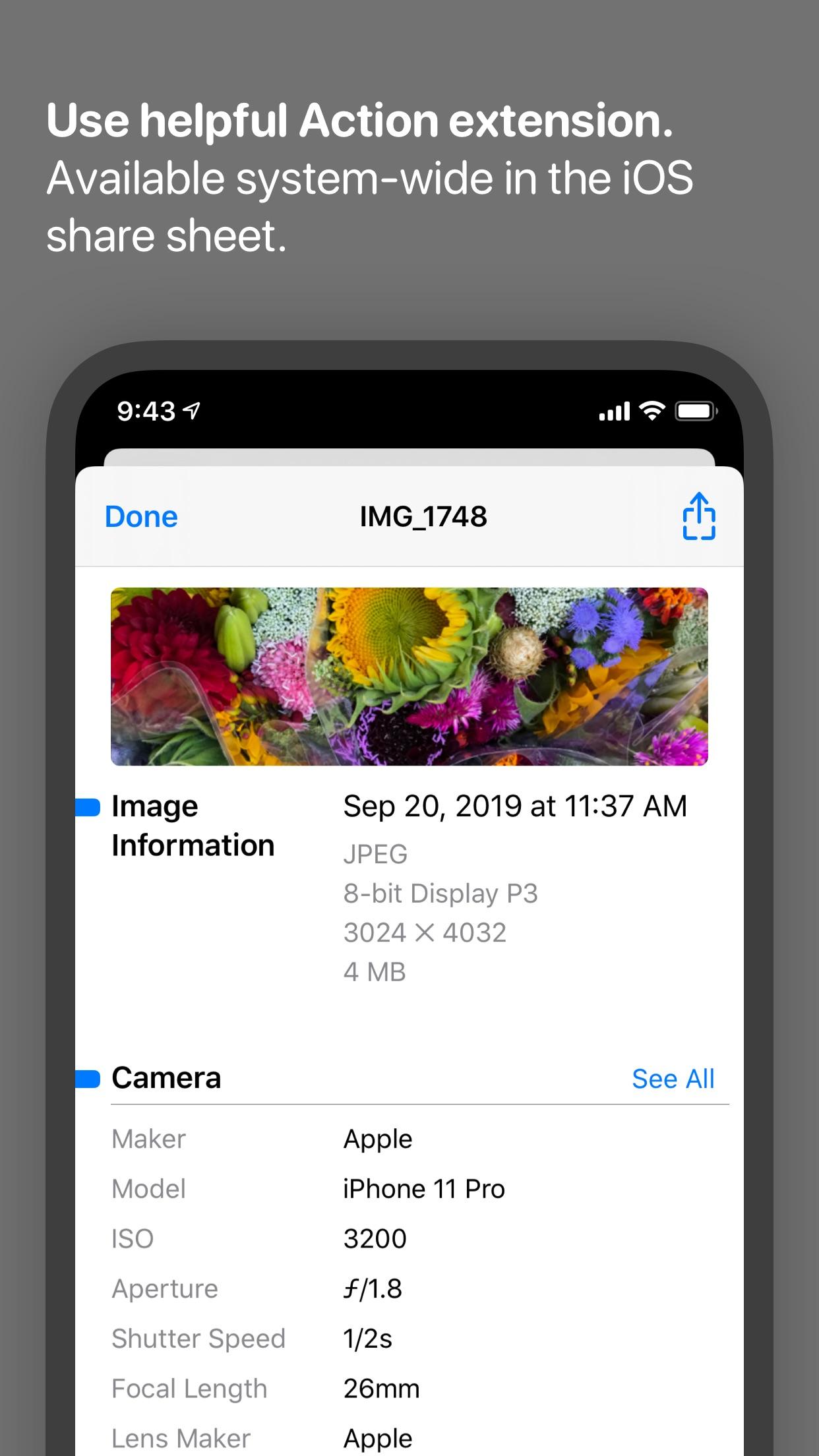 Screenshot do app Metapho