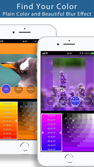 Squaready - Smart Layouter for Instagram screenshot