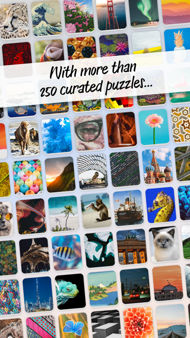 Pictominoes: Jigsaw Puzzles screenshot 5