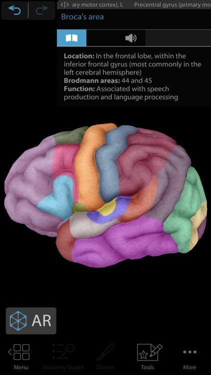 Human Anatomy Atlas 2020 screenshot-9