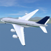 Airport Madness 3D - MP Digital, LLC