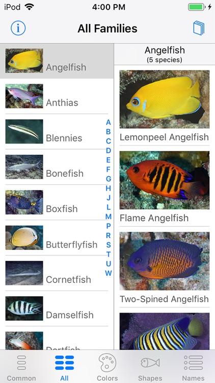 Tetiaroa Fish Guide
